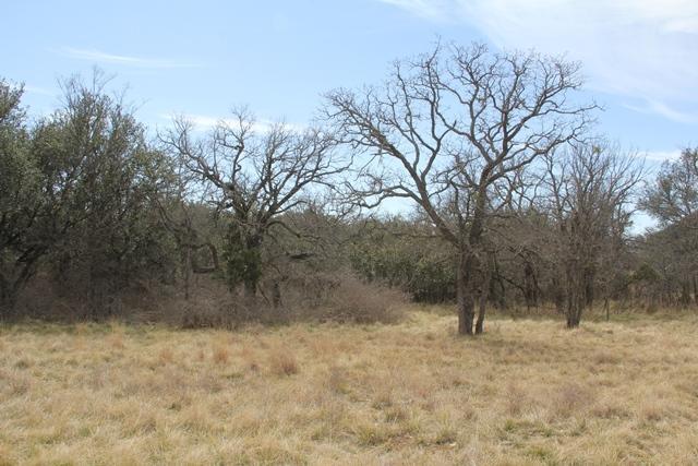 Sold Property | 3 Oakdale Terrace  Brownwood, Texas 76804 3
