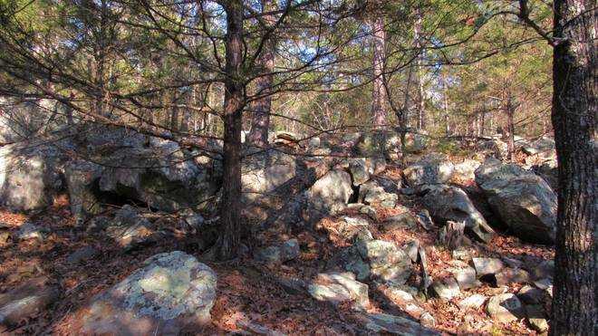 | Kiamichi Wilderness Moyers, OK 74557 21