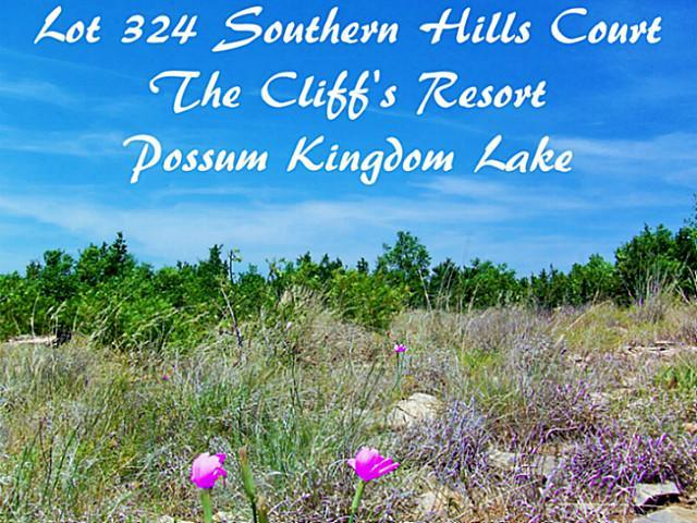 Sold Property | 40 Southern Hills Court Possum Kingdom Lake, Texas 76449 0