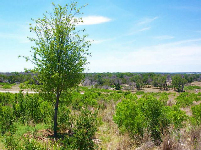 Sold Property | 40 Southern Hills Court Possum Kingdom Lake, Texas 76449 7