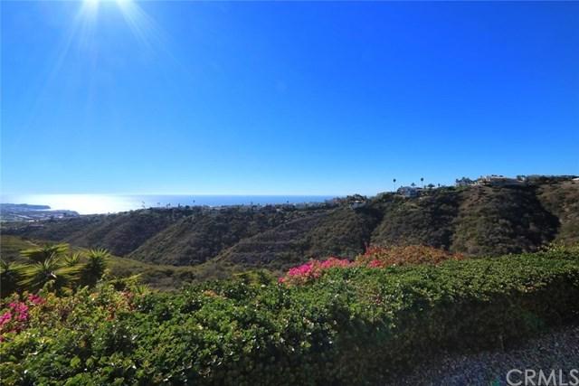 Active | 31701 Crystal Sands Drive Laguna Niguel, CA 92677 45