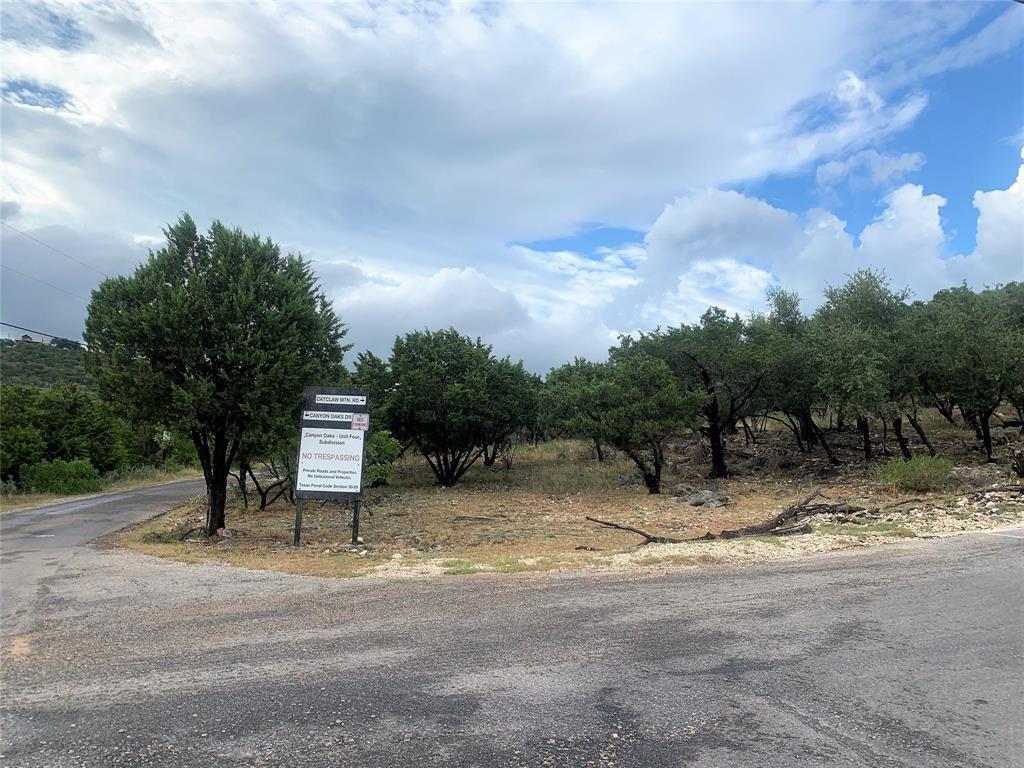 Active   0 Canyon Oaks Drive Lot 9 Concan, TX 78838 10