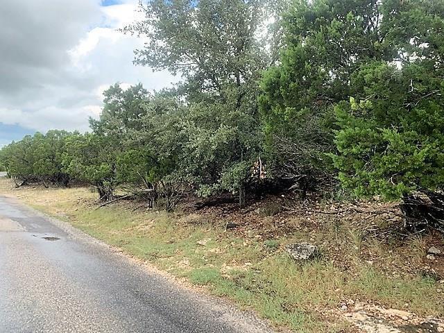Active   0 Canyon Oaks Drive Lot 9 Concan, TX 78838 2