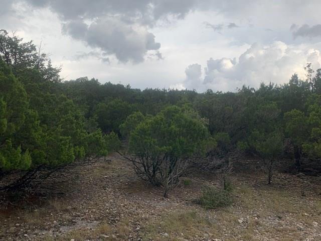 Active   0 Canyon Oaks Drive Lot 9 Concan, TX 78838 9