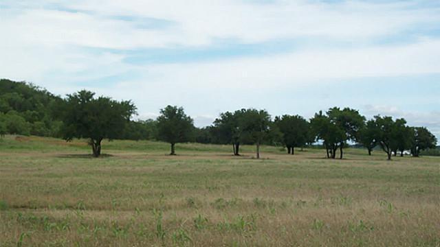 Sold Property   0 Garrett Morris Parkway Mineral Wells, Texas 76067 0