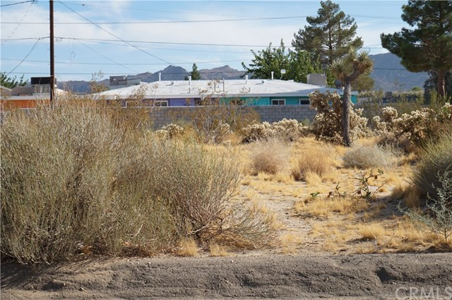 Closed | 0 VERBENA Joshua Tree, CA 92252 3