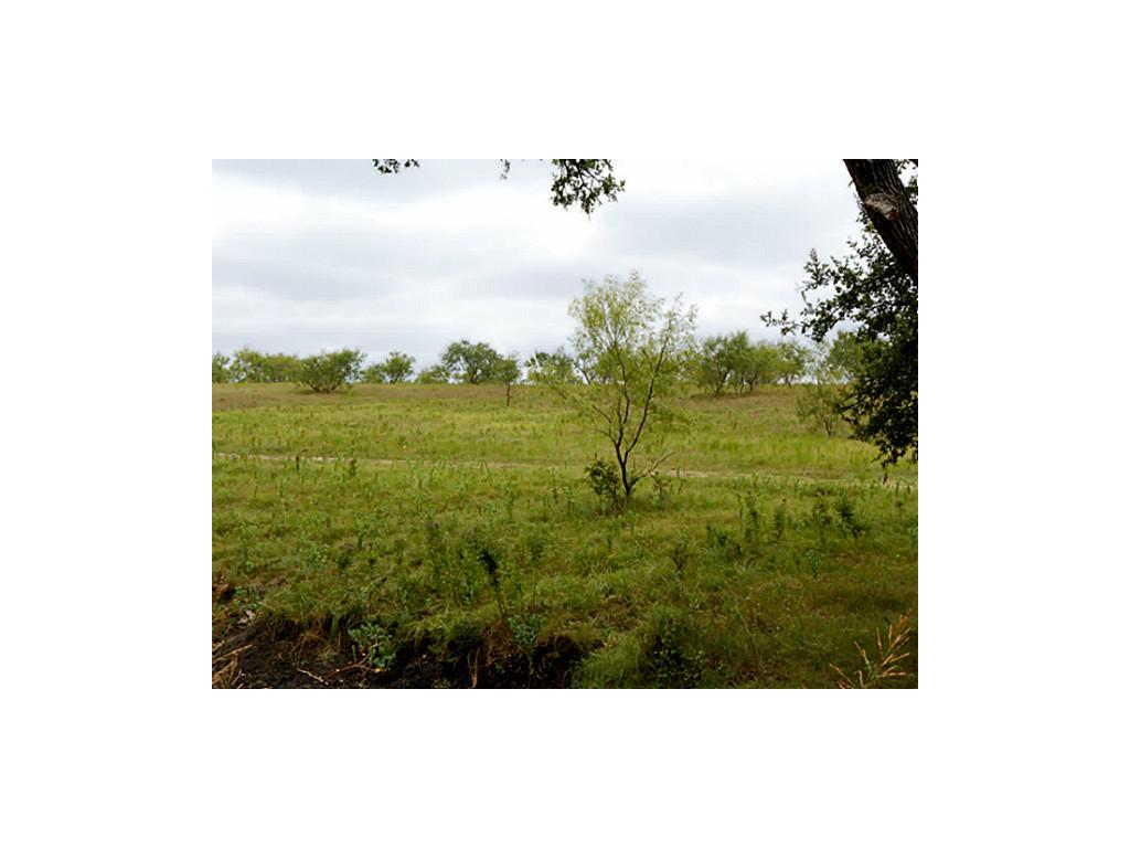 Sold Property | 00 Gin Road Ennis, Texas 75119 3