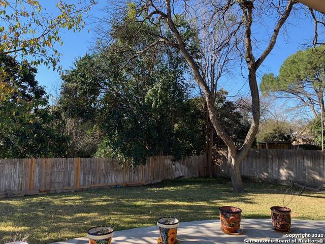 Active Option   13007 KINGS FOREST ST  San Antonio, TX 78230 13