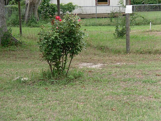 Sold Property | 815 NE 4th Street Hubbard, Texas 76648 2