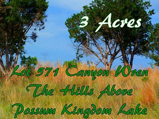 Sold Property | Lt 571 Canyon Wren Loop Possum Kingdom Lake, Texas 76449 2