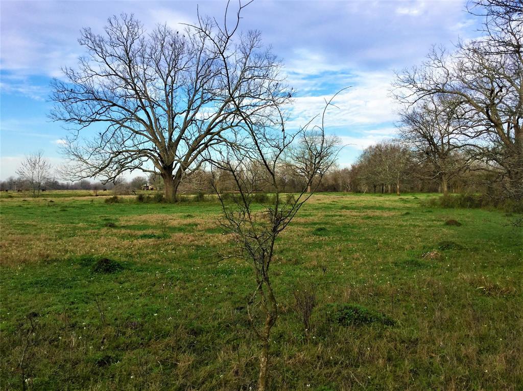 Active   1415 Pony Lane Simonton, TX 77476 8