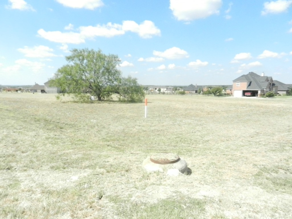 Sold Property | 1619 Rohne Drive Cedar Hill, Texas 76065 2