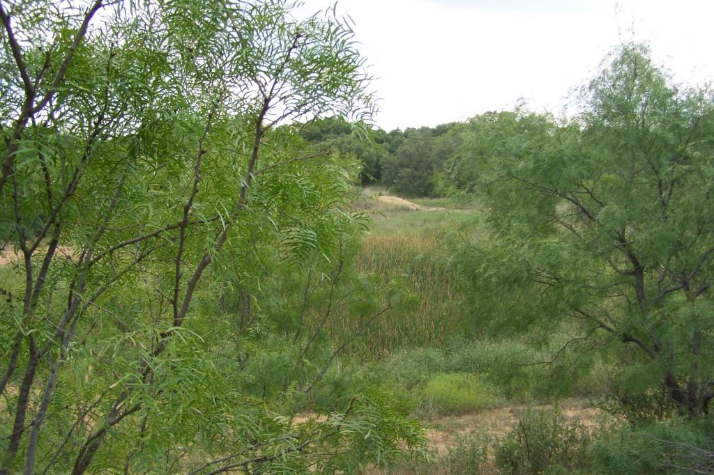 Sold Property   3305 COUNTY ROAD 152  Brownwood, Texas 76801 24