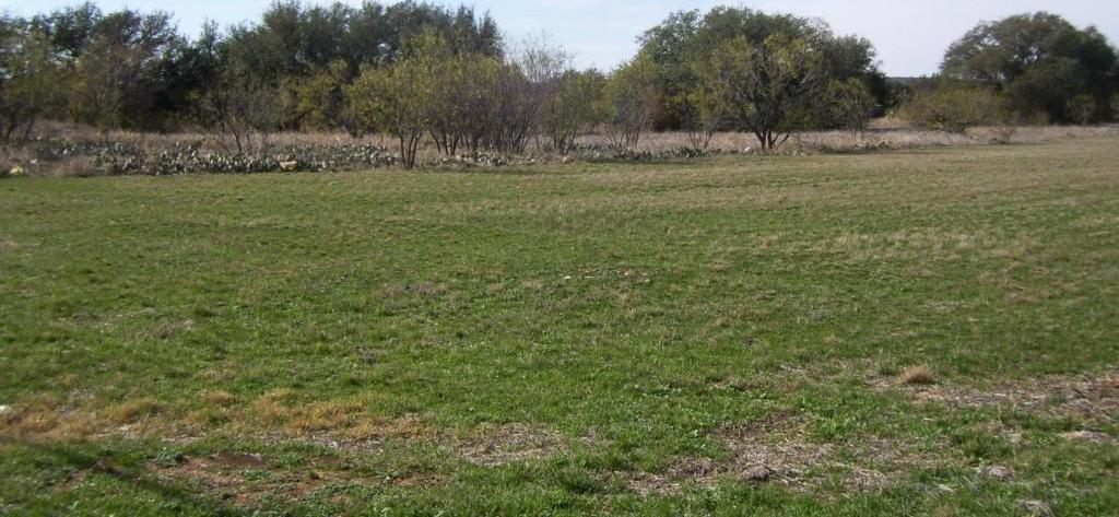 Sold Property | 0000 Wagon Wheel, Sierra  Brownwood, Texas 76801 4