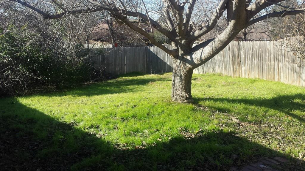 Sold Property | 2008 Azalea  Denton, Texas 76205 5