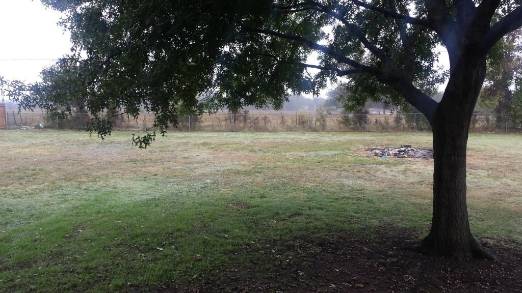 Sold Property | 206 Prairie Creek  Red Oak, Texas 75154 7
