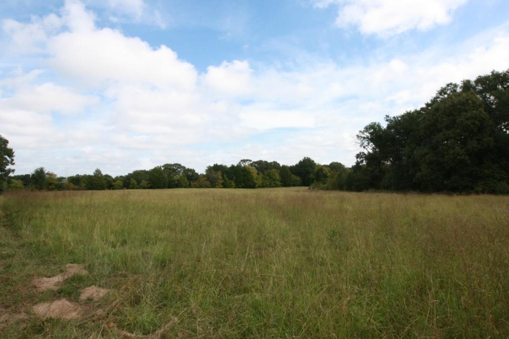 Sold Property | 18 Acres Hwy 19  Canton, Texas 75103 0