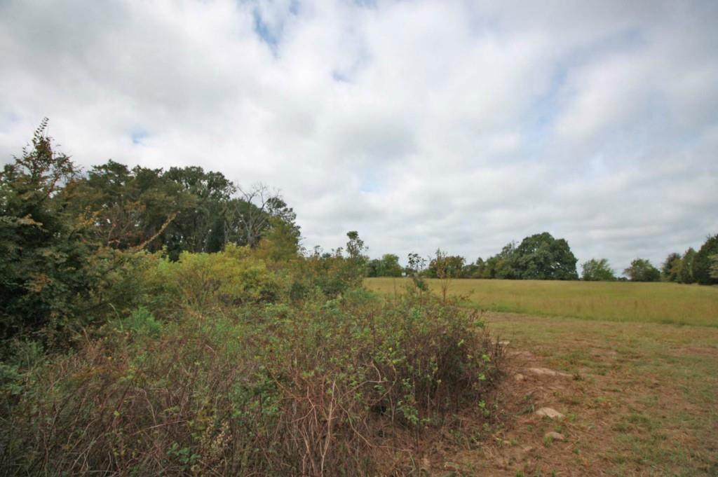 Sold Property | 18 Acres Hwy 19  Canton, Texas 75103 13