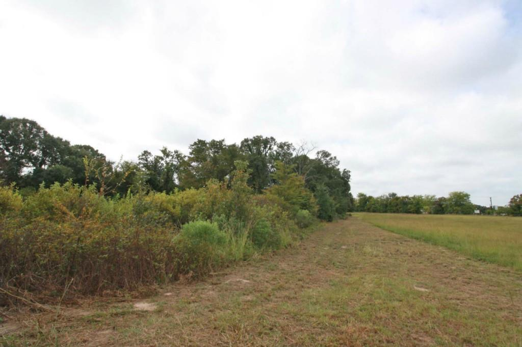 Sold Property | 18 Acres Hwy 19  Canton, Texas 75103 15
