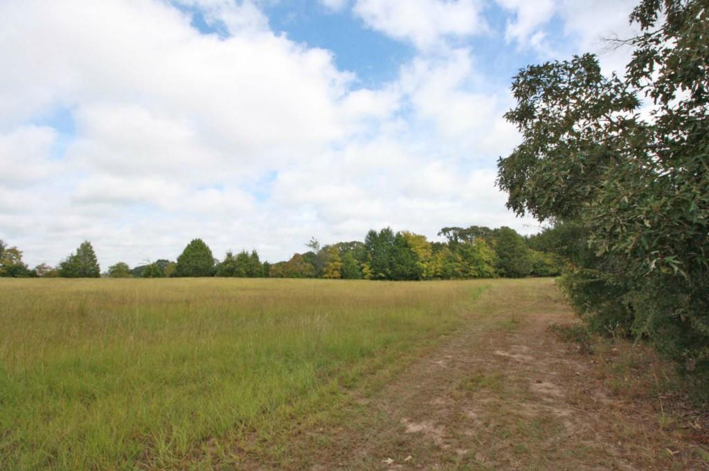 Sold Property | 18 Acres Hwy 19  Canton, Texas 75103 17