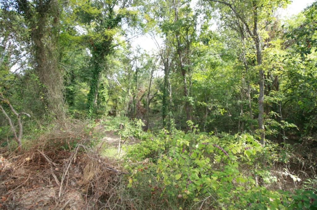 Sold Property | 18 Acres Hwy 19  Canton, Texas 75103 21
