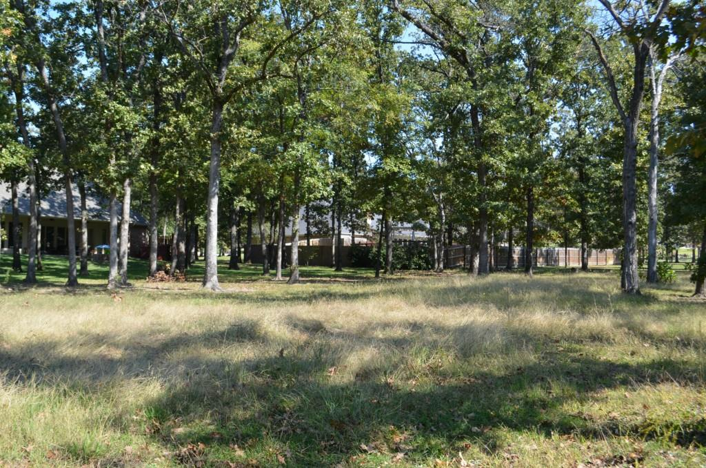 Sold Property | 0 County Road 3640  Sulphur Springs, Texas 75482 0