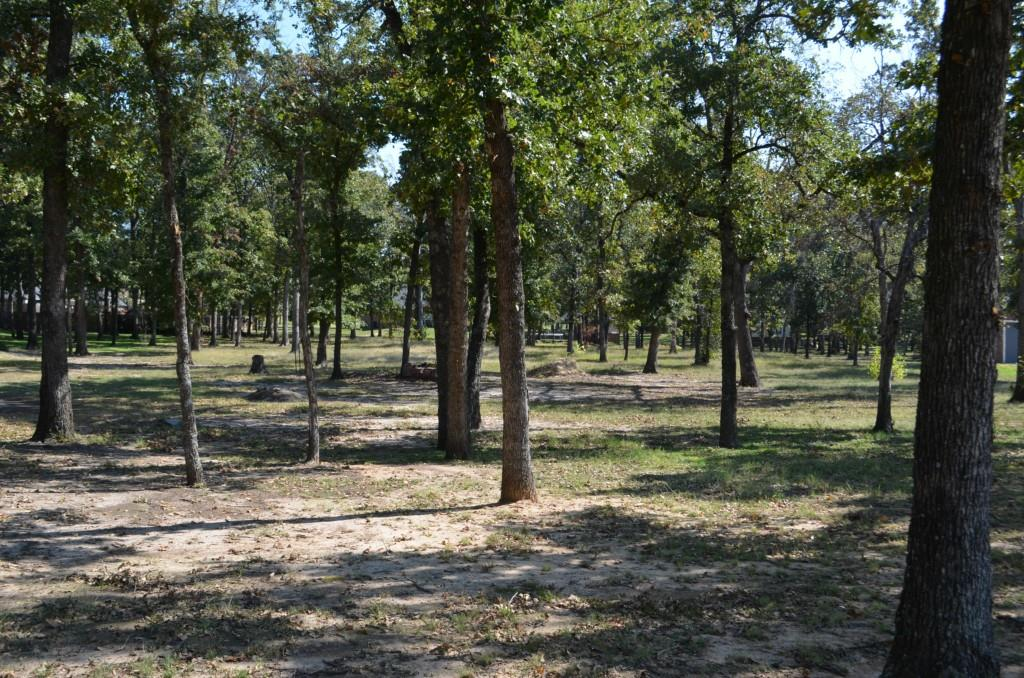 Sold Property | 0 County Road 3640  Sulphur Springs, Texas 75482 1