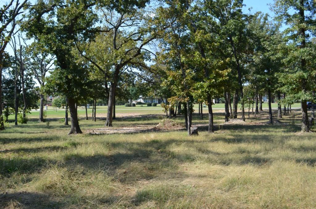 Sold Property | 0 County Road 3640  Sulphur Springs, Texas 75482 3