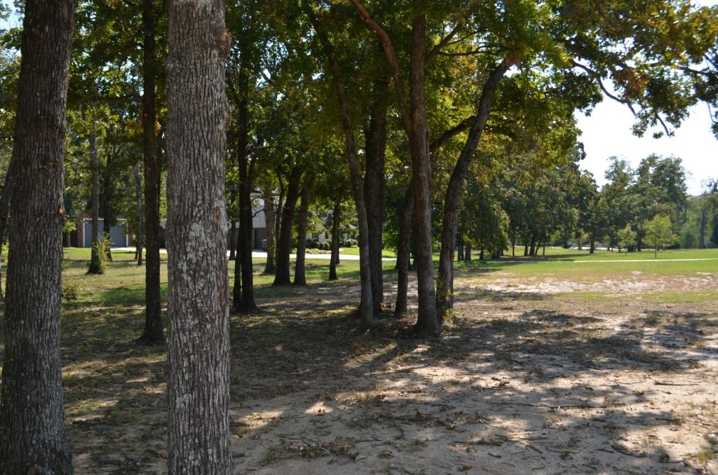 Sold Property | 0 County Road 3640  Sulphur Springs, Texas 75482 4