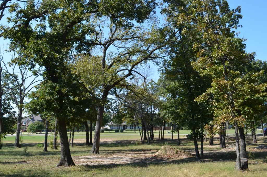 Sold Property | 0 County Road 3640  Sulphur Springs, Texas 75482 5