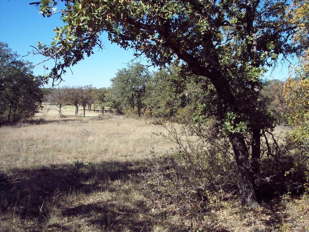 Active | Lot 28 S Sugartree Drive Lipan, Texas 76462 0