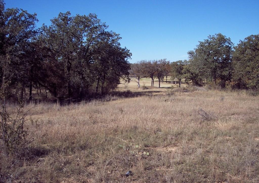 Active | Lot 28 S Sugartree Drive Lipan, Texas 76462 1