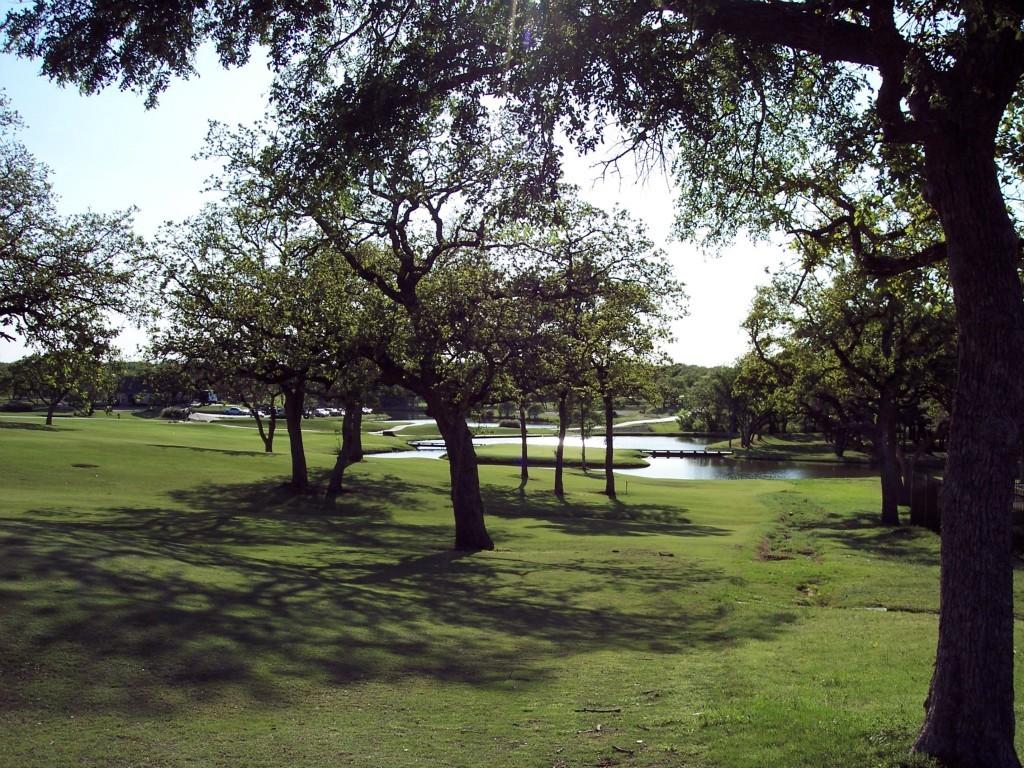 Active | Lot 28 S Sugartree Drive Lipan, Texas 76462 14