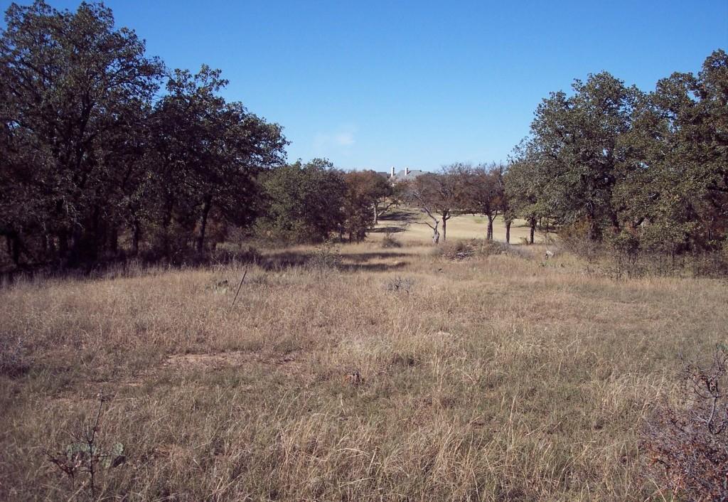 Active | Lot 28 S Sugartree Drive Lipan, Texas 76462 2