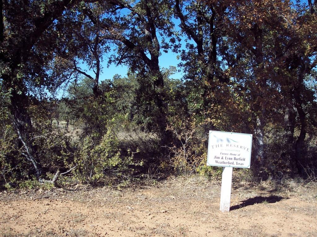 Active | Lot 28 S Sugartree Drive Lipan, Texas 76462 3