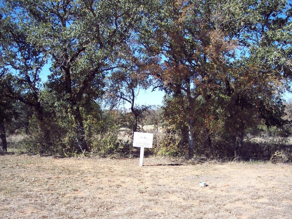 Active | Lot 28 S Sugartree Drive Lipan, Texas 76462 6