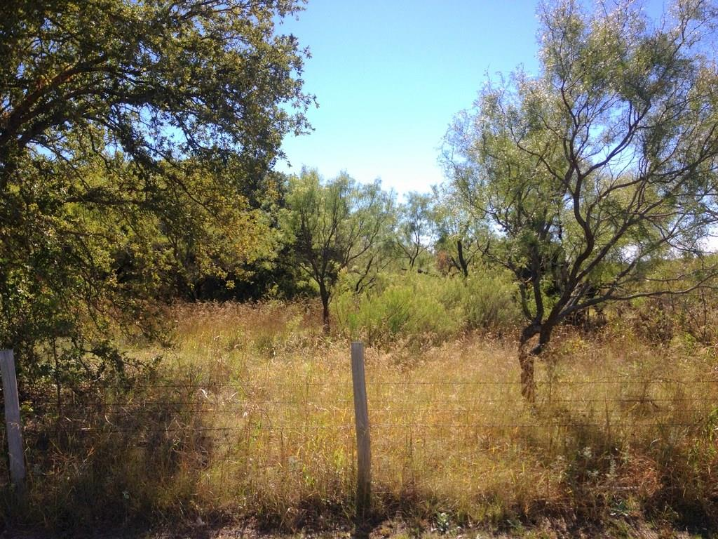 Sold Property | 000 cr 243  Rising Star, Texas 76471 21