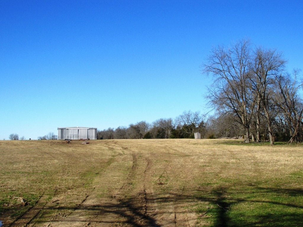 Sold Property | TBD CR 4136  Cooper, Texas 75432 4