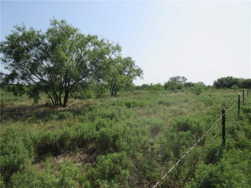 Sold Property | 0060 Union Grove Road Valley View, Texas 76272 2