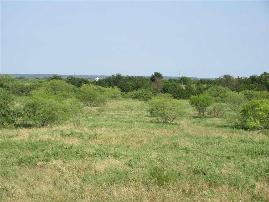Sold Property | 0060 Union Grove Road Valley View, Texas 76272 3