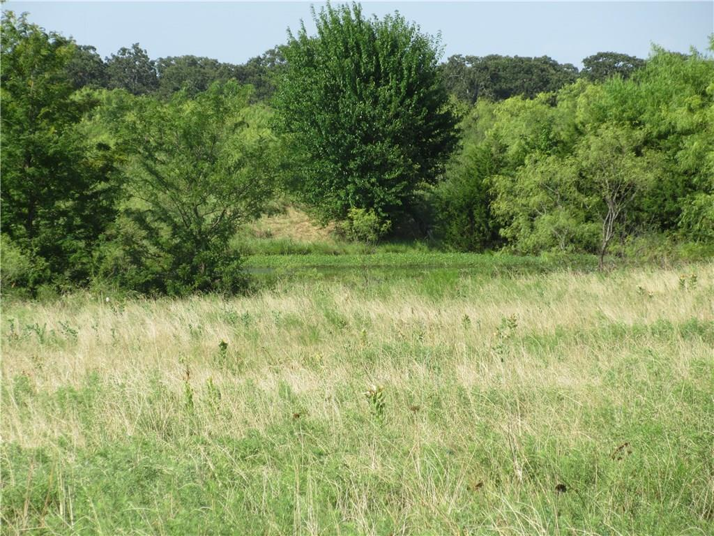 Sold Property | 0060 Union Grove Road Valley View, Texas 76272 8