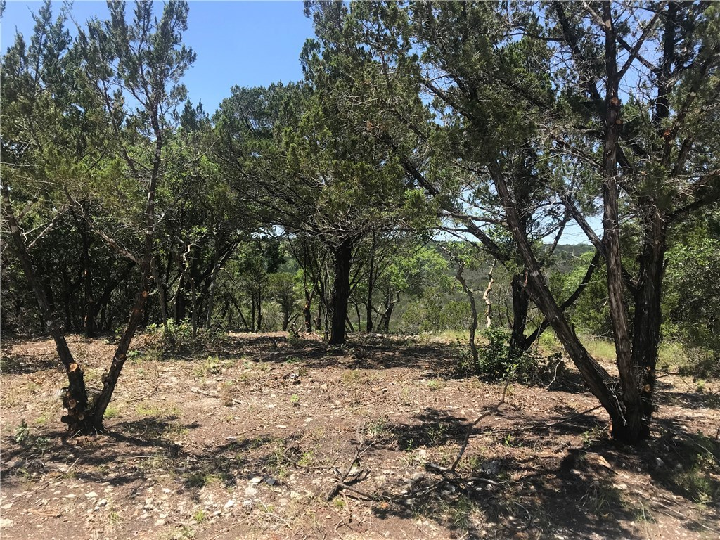 Sold Property | 10938 Panoramic  VW Jonestown, TX 78645 4