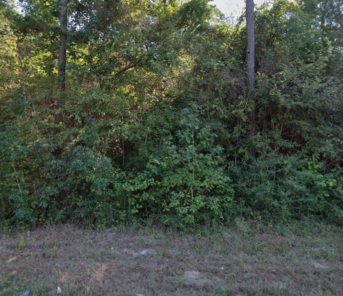 Active   13763 Lakeland Montgomery, TX 77356 3