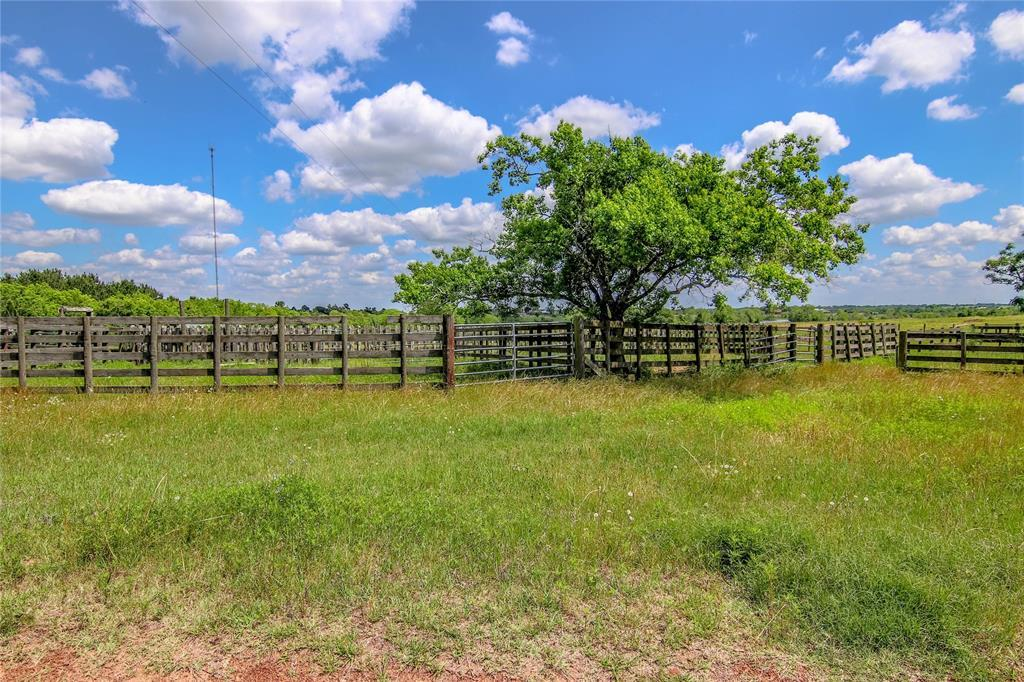 Welcome to Harris Ranch in Sealy, 87 ac with Awesome Lake  | 9752 Harris Ranch Lane Sealy, Texas 77474 4