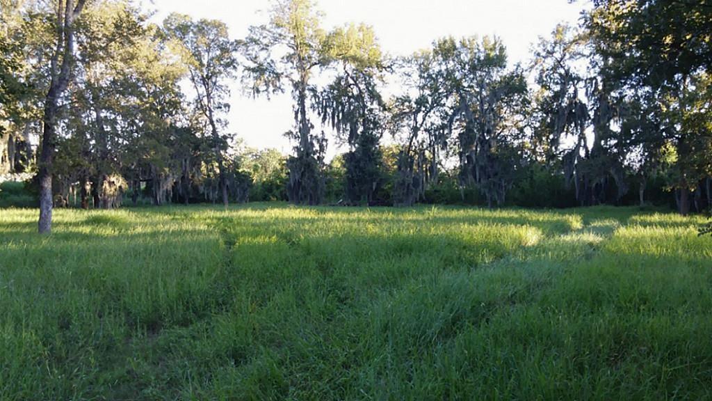 Off Market | 15721 Oleta  Lane Sugar Land, TX 77498 2