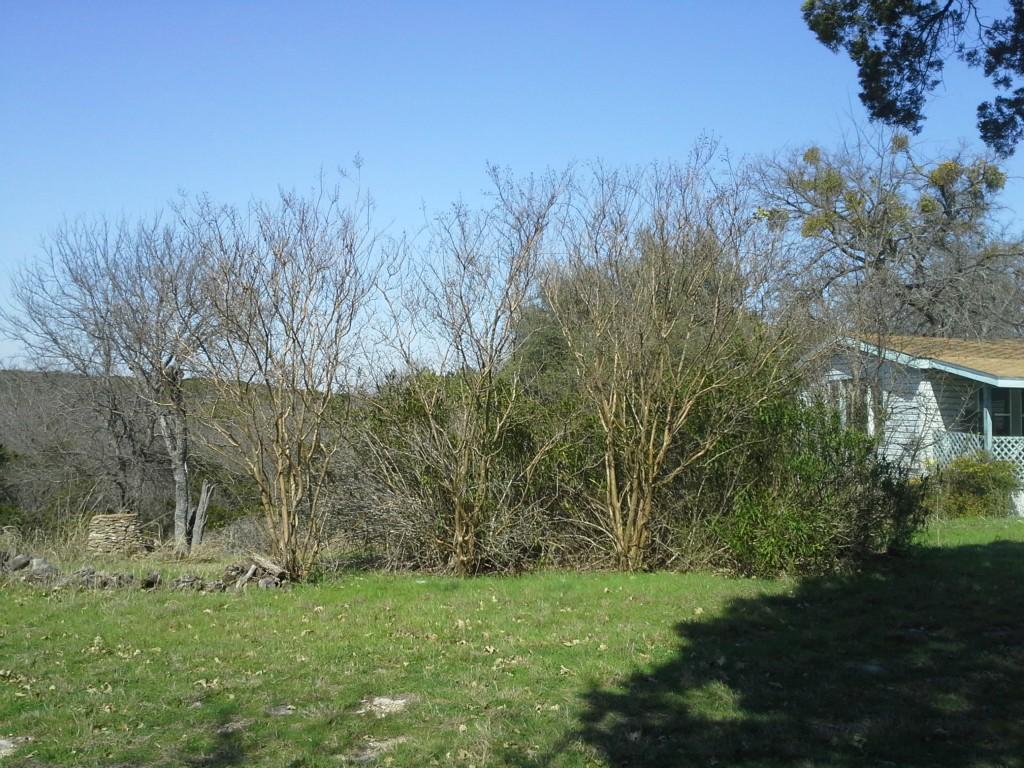 Sold Property   113 County Rd 1520  Morgan, Texas 76671 1