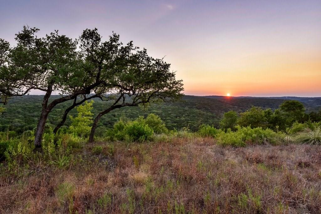 Active | 2021 SURREY HILL Drive Austin, TX 78746 4