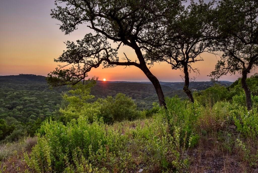 Active | 2021 SURREY HILL Drive Austin, TX 78746 5