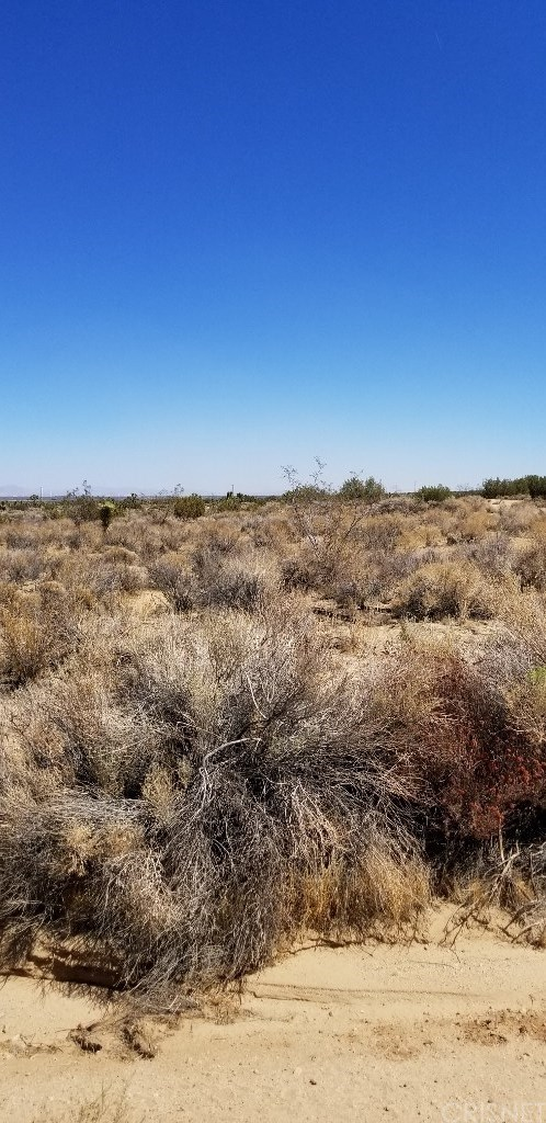 Closed | 227 Fort Tejon Road Llano, CA 93544 4