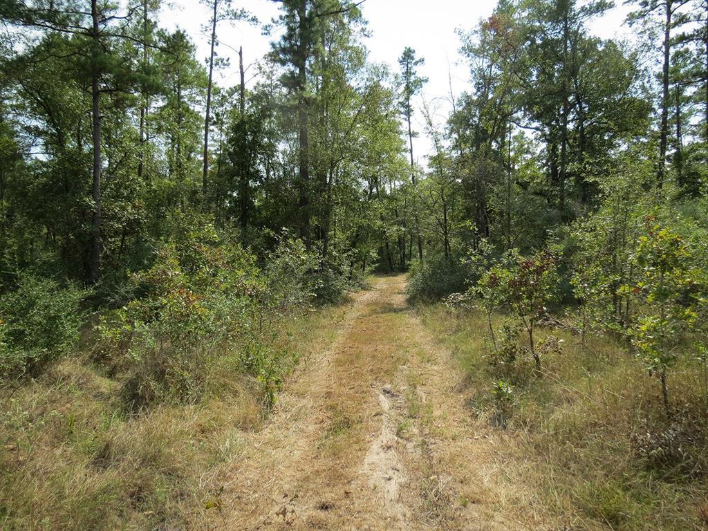 Active   0000 Wood Farm Road Huntsville, Texas 77320 1